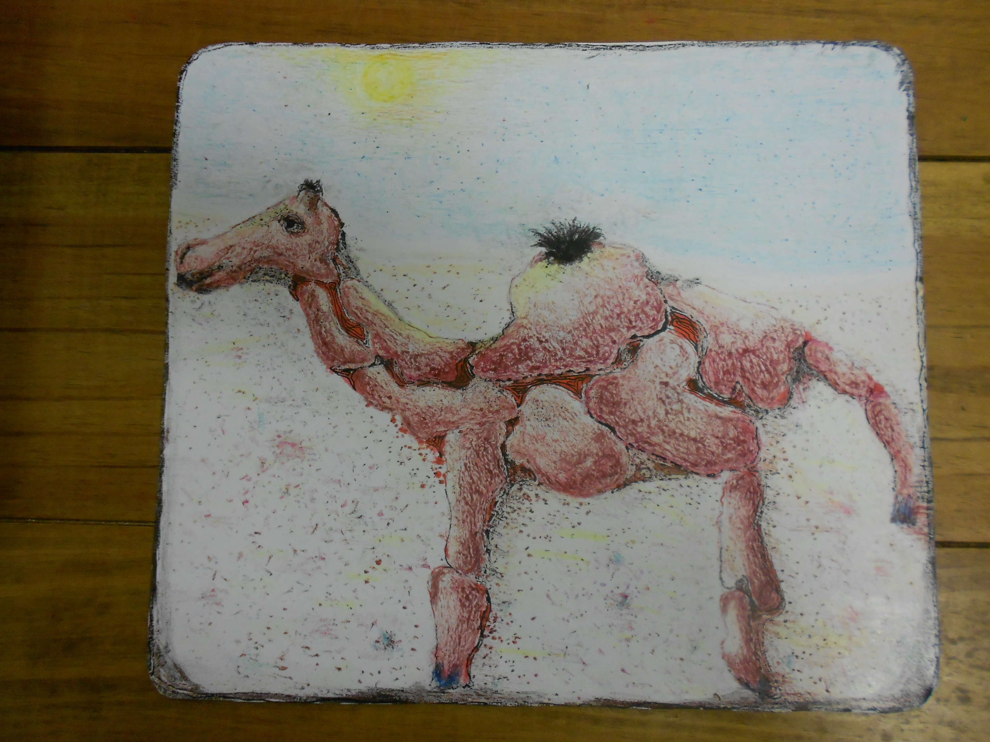 dubai kameel